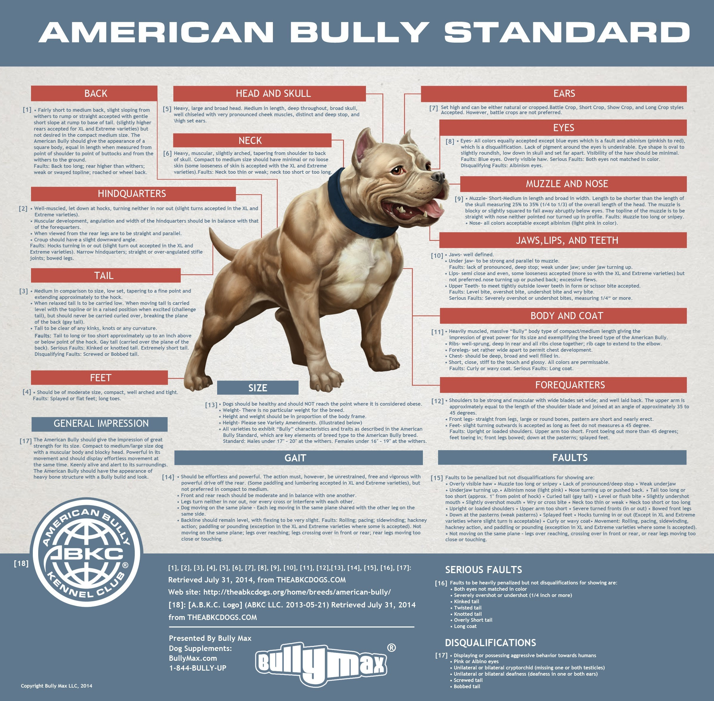 The American Bully Standards & Terminology of Structure -